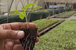 Agrarische ondernemers