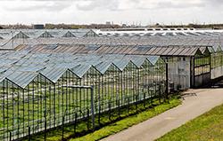 Landbouwnormen